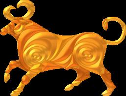 TAURUS-PNG